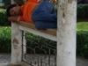 In Vietnam kunnen ze overal slapen