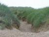 Het duin in, omhoog in rul zand